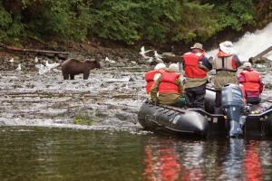 Exploring Alaska's Coastal Wilderness