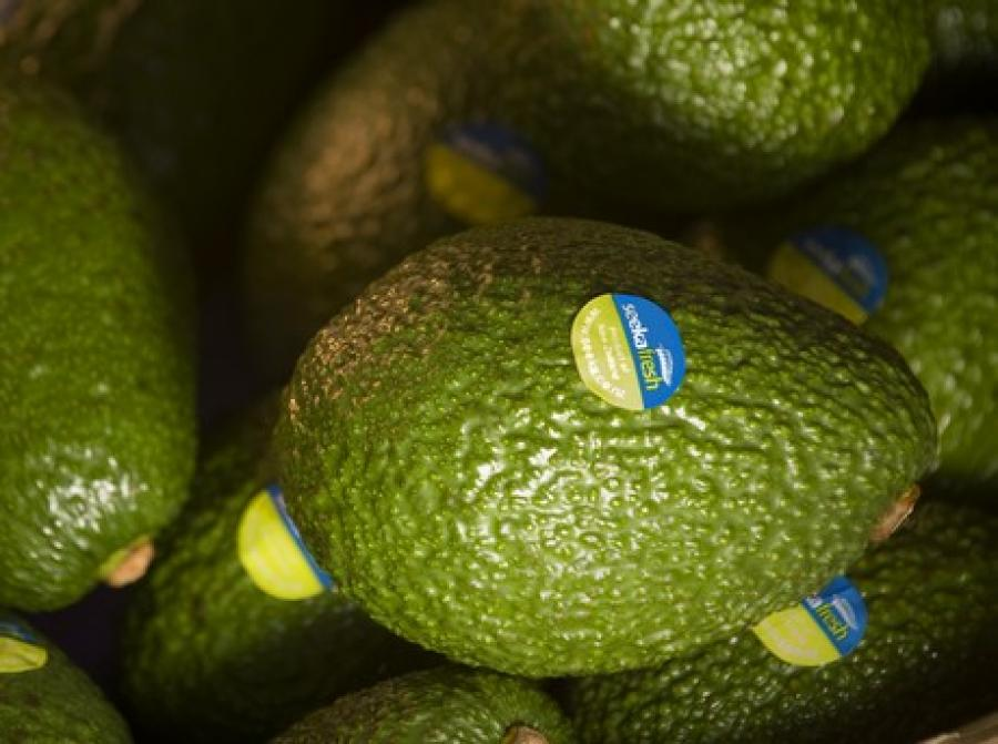 Avocado and kiwi crops escape major storm damage