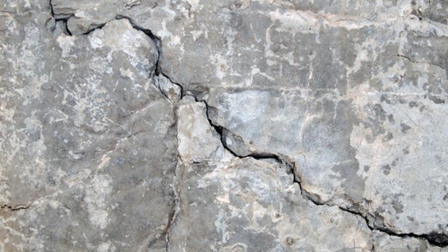 The concrete contains a fungus that produces calcium carbonate when exposed to water and oxygen