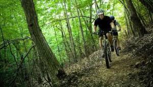 Beware the Bikers of the Swiss Alps
