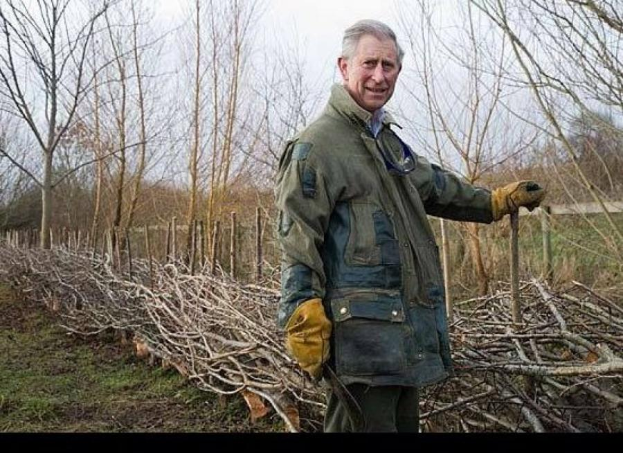 Prince Charles Has Uncanny Ability to Identify Issues, Trends Before They Go Mainstream