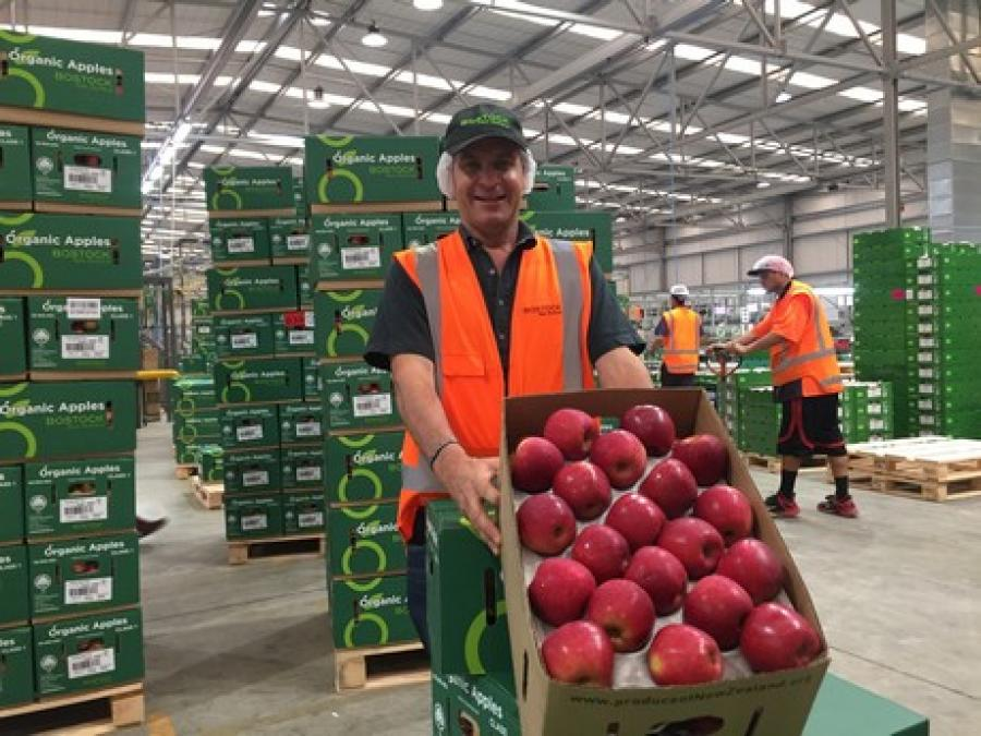 John Bostock, Owner of Bostock New Zealand with organic Dazzle apples