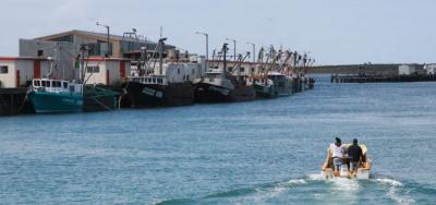 Oyster boats at Bluff's South Port.