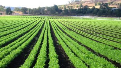 The changing face of Agritech