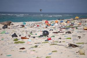 Henderson Island Breaks the World Record for Plastic Pollution