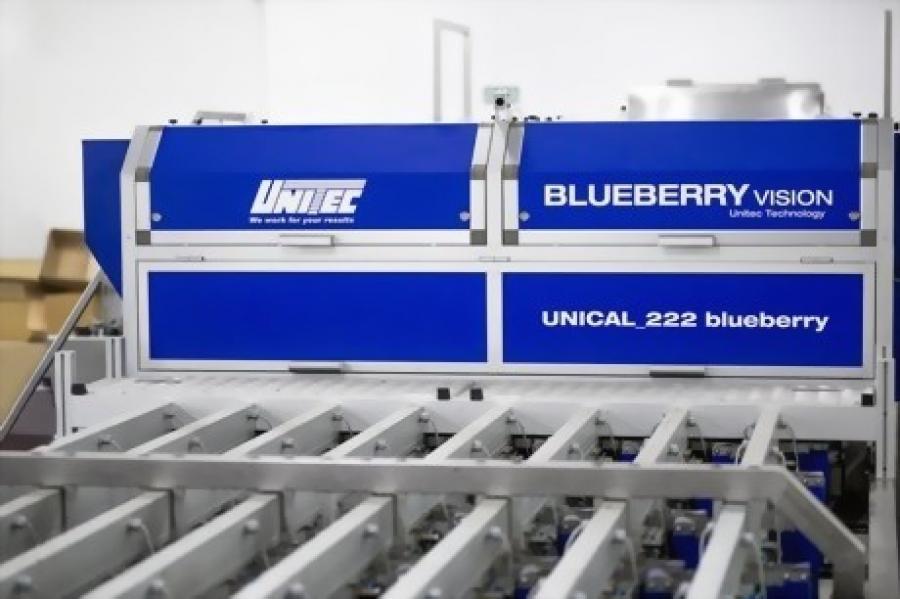 Equipment revolution in blueberry industry