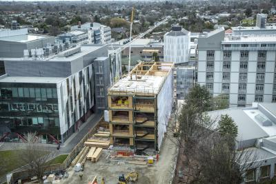 New Beatrice Tinsley building uses innovative NZ timber tech