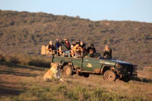 Garden Route & Safari - South Africa
