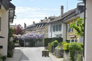 Living in Switzerland: A Settler's Experience