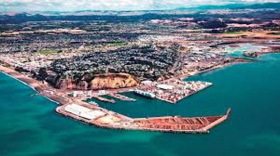 Record result for Napier Port