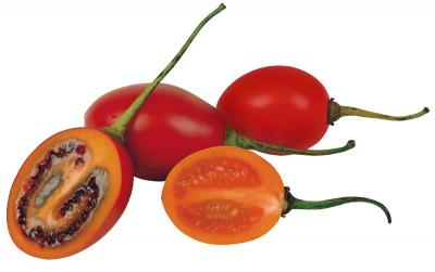 NZ co-operative ships first batch of tamarillo pulp to US