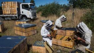 Taranaki company up against agri-tech giant