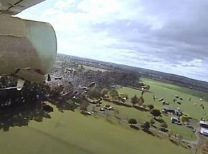 Sterile codling moths dispersed