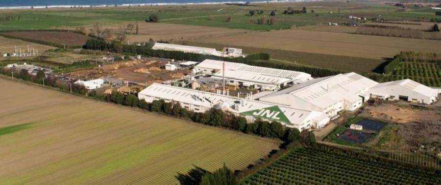 Juken's Matawhero Mill in Gisborne processes Radiata Pine from the company's East Coast Forests.