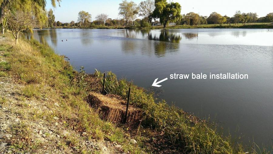 An artificial habitat installation on a degraded section of riverbank in the Avon catchment in 2015.