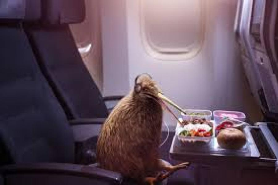 Air New Zealand Is Coming After Americans With A Talking, Flying Kiwi