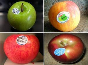 New Zealand: Alternative fruit sticker wins top accolade