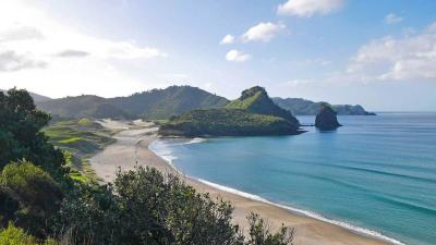 Great Barrier Island off the coast of Auckland.