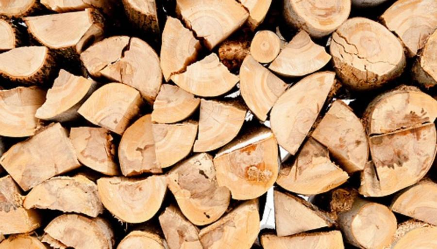 Grant to investigate solution to hazardous treated timber waste