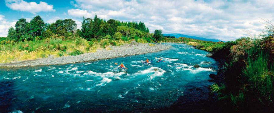 The seven steps to healthier New Zealand waterways