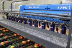 High-tech and fruit sorting