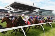 Melbourne Cup - 8 Day Phar Lap Tour