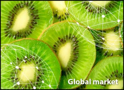 Overview global kiwifruit market