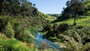 Fonterra Launches Plan to Improve Waterways