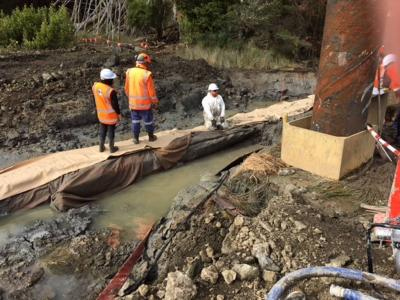 What may be an unfinished waka is uncovered on Pūhoi motorway site
